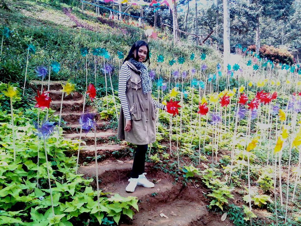 Taman Kincir Taman Nectar Wisata Agro Selopajang Timur (WAST) Blado Batang
