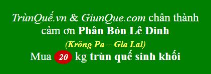 Trùn quế Krông Pa