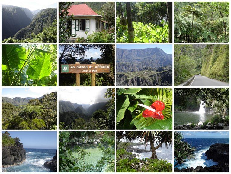 Le Blog De La Famille Zanelli De Labriere La Reunion Jardin D Eden