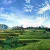 Munduk, Desa Wisata di Bali, Penuh Kearifan Lokal