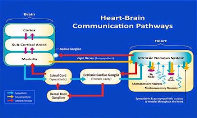 Heartmath UK, Natural Health, Personal Development