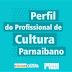 Pesquisa objetiva obter e interpretar dados sobre o perfil do profissional em cultura de Parnaíba