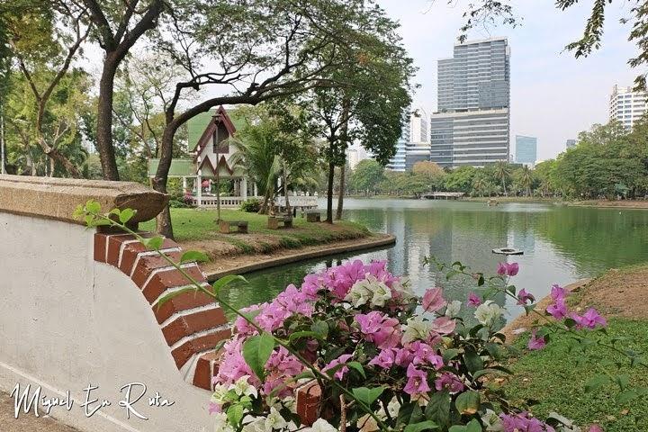 Lumpini, pulmón de Bangkok