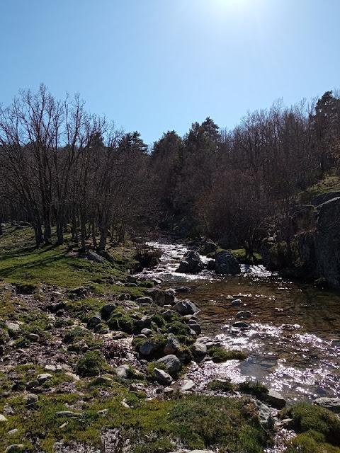 Arroyo del Aguilón en la zona de las Praderas