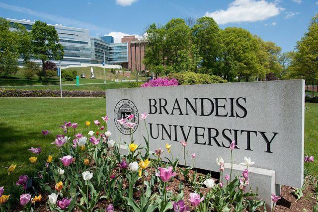 منح جامعة برانديز ˈbrændaɪs للدراسة في أمريكا 2021