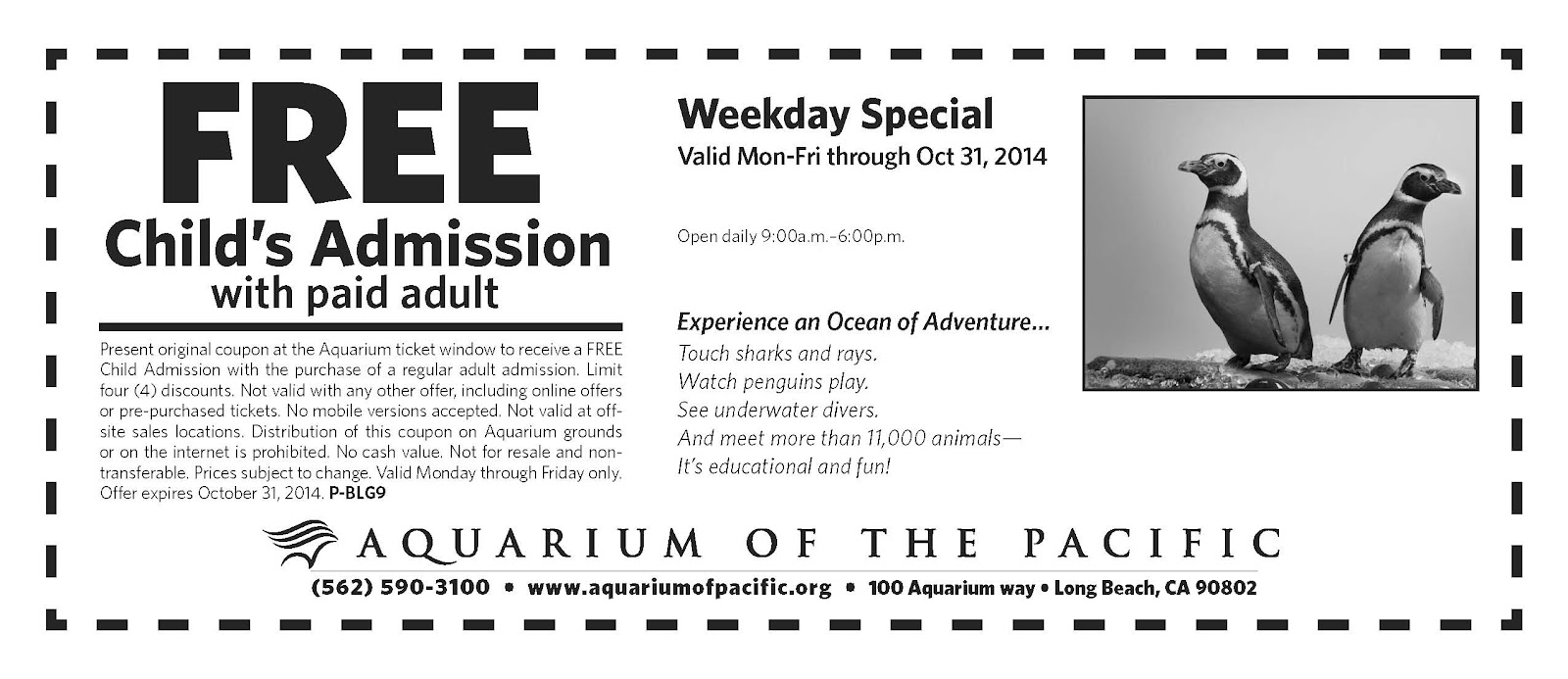 image about Aquarium of the Pacific Coupons Printable called Aquarium of the pacific price cut coupon codes 2018 : Pizza discounts