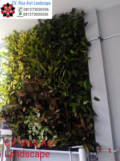 cv. risa asri landscape gambar taman dinding vertikal VERTICAL GARDEN green wall living