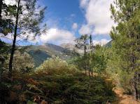 http://santamartak-amina.blogspot.com.es/2017/02/arenas-de-san-pedro-13-09-2015-silvia.html