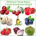 Makanan Yang Bagus Untuk Kesehatan Ginjal