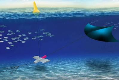 Pipa-subaquatica