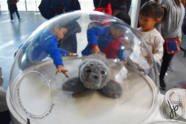 furry seal robot