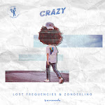 Lost Frequencies & Zonderling - Crazy - Single Cover