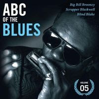 ABC of the blues volume 05