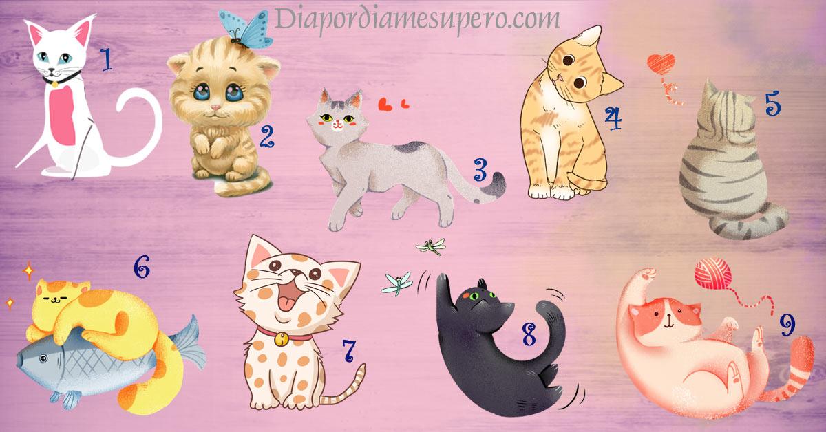 Test: Elige un gato y te diremos algo sobre tu personalidad
