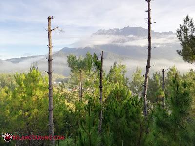 View Terbaik Gunung Kinabalu Dari Resort
