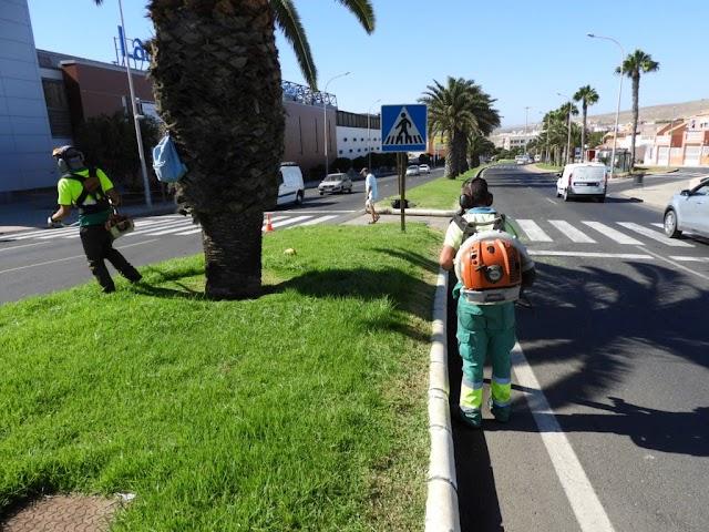 Fuerteventura.- Puerto del Rosario lleva a cabo el adecentamiento y mantenimiento de zonas ajardinadas