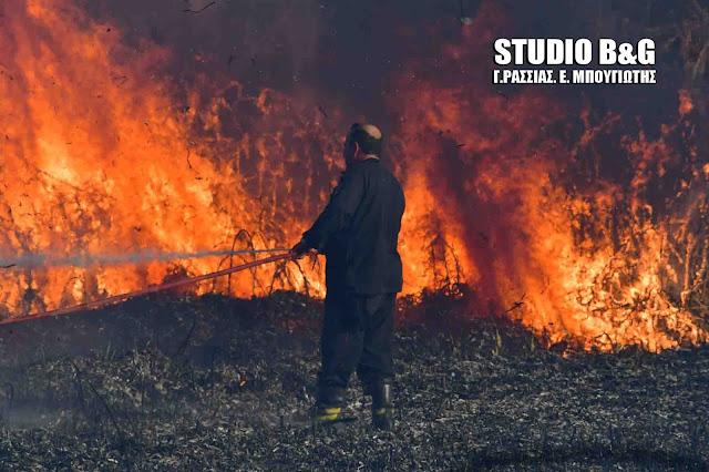 Πυρκαγιά στους Μύλους Αργολίδας