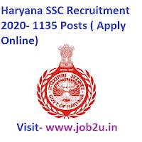 HSSC Recruitment 2020- 1135 Posts ( Apply Online)