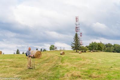 Łysa Góra, okolice wierzchołka