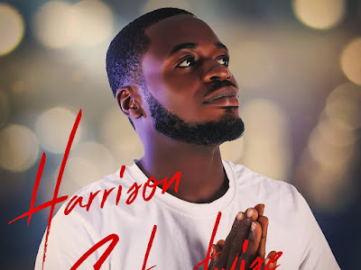 DOWNLOAD MP3: Harrison Streetwise – Show Us Love