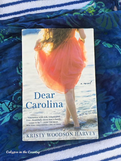 A Summer Reading Must Read!  Dear Carolina by Kristy Woodson Harvey