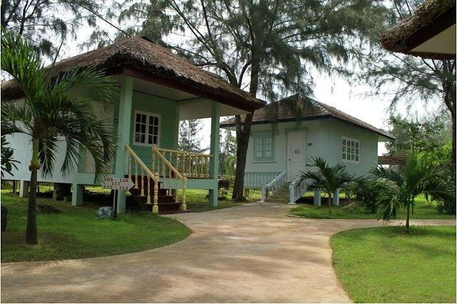 Thiên nhiên tĩnh lặng giúp bạn thư giãn hôn khi đến với Paradise resort Vũng Tàu