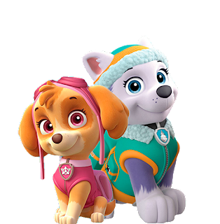 Paw Patrol Abc en Rosa con Skye y Everest.
