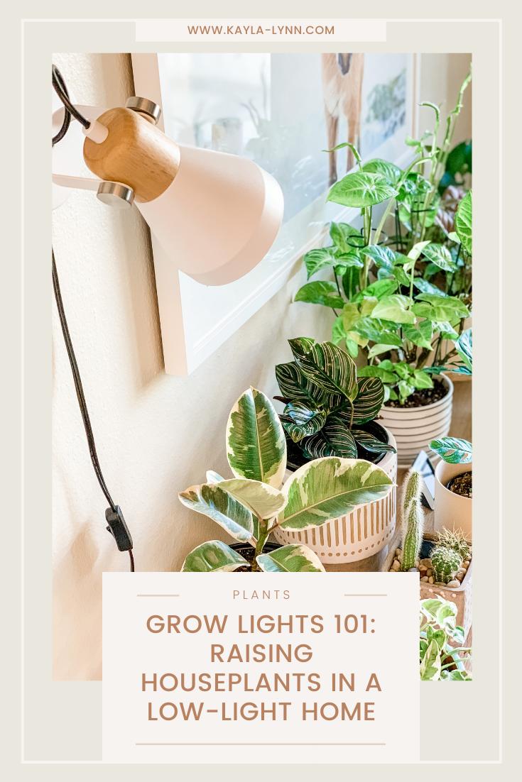 Pinterest image Grow Lights 101