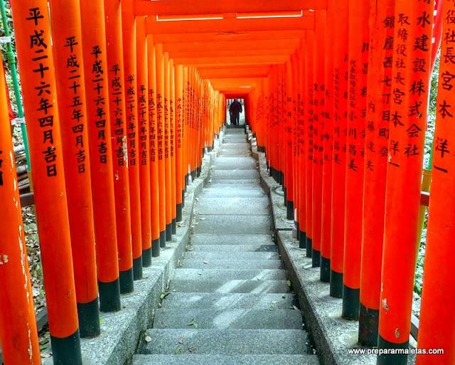 toris rojos en Tokio