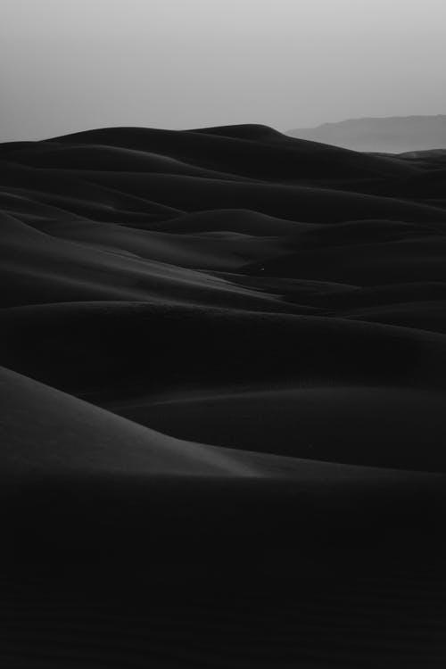Black background nature