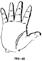 हाथ में दोहरी जीवन रेखा -  हस्तरेखा (Double Lifeline On Hand Palmistry)