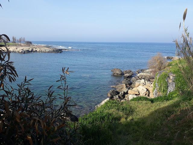 beach path walk