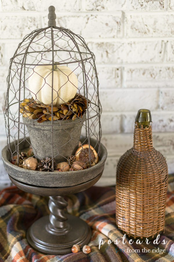 pedestal with chicken wire cloche and fall decor