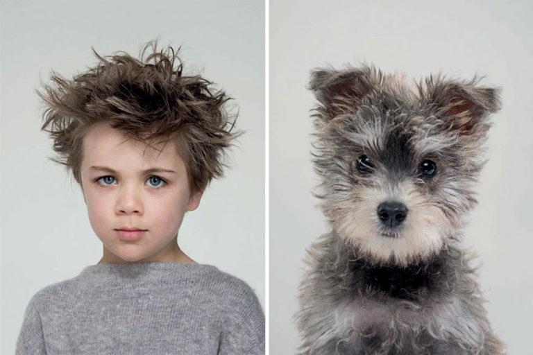 proprietari allo stesso modo-con-cani-07