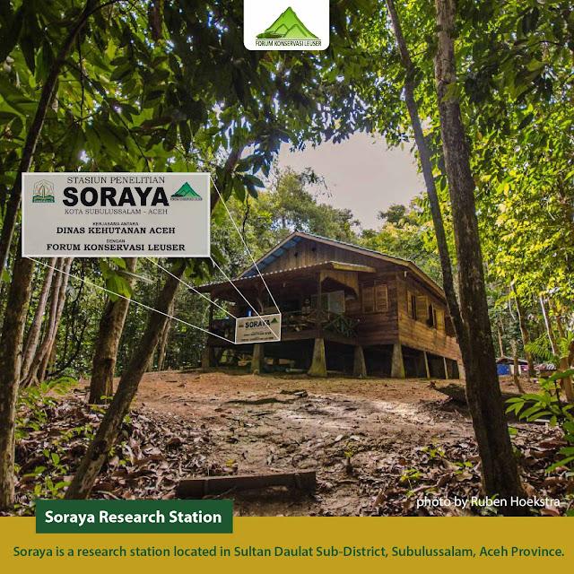 stasiun soraya