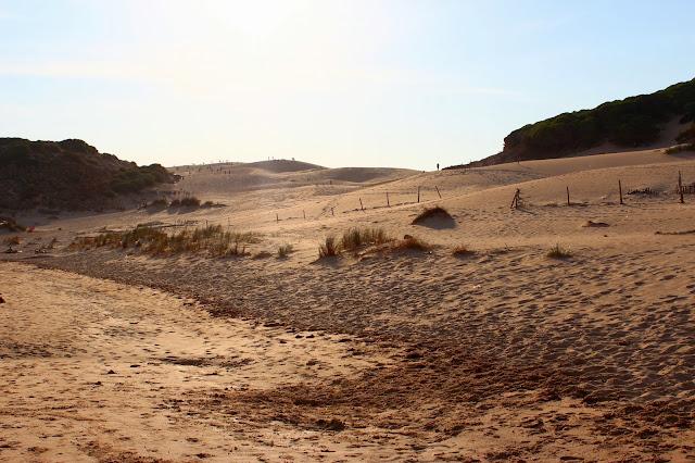 Dunas de Bolonia (Cádiz)