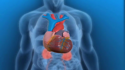 Wow, ini yang terjadi kepada tubuhmu ketika berhenti merokok
