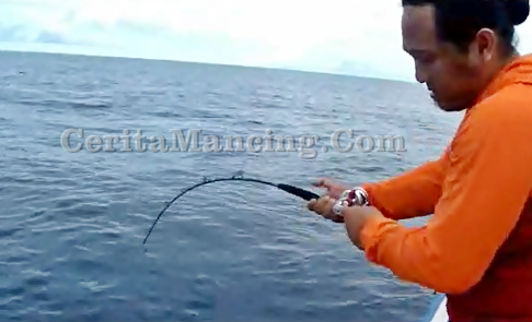 Mancing Jigging Strike Ikan Monster Amberjack