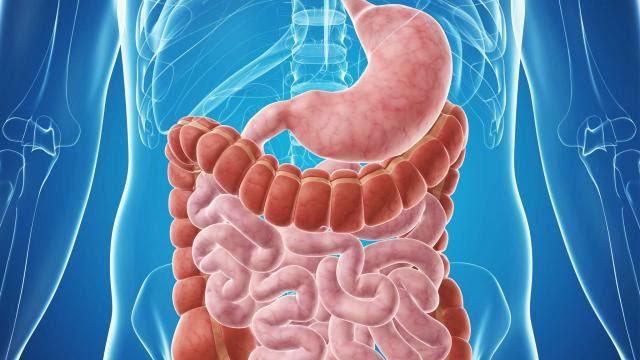 constipatia poate fi prevenita si tratata prin remedii naturale