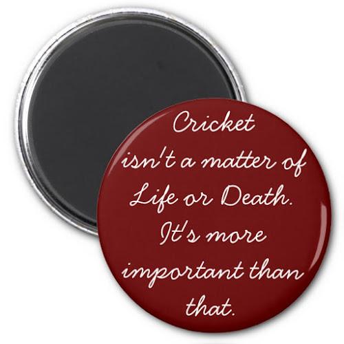 Cricket isnt a matter of.. | Funny Fridge Magnet