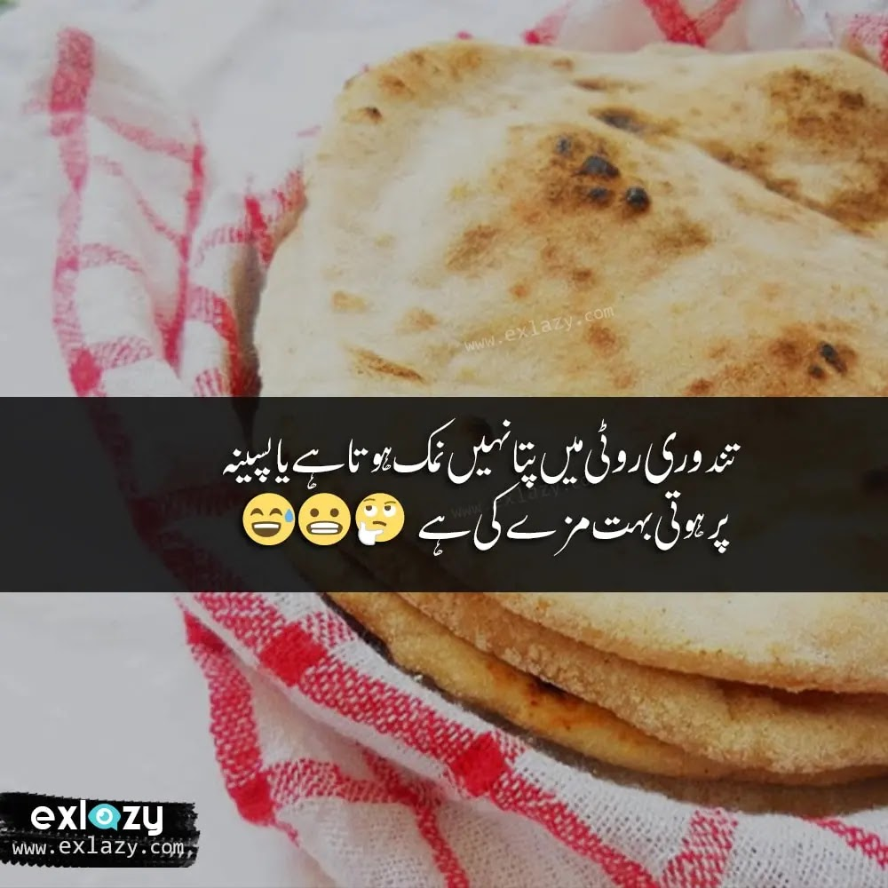 Funny Status in Urdu for Whatsapp