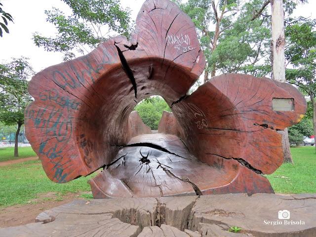 Close-up da Escultura Lúdica-Teia - Parque Ibirapuera - São Paulo