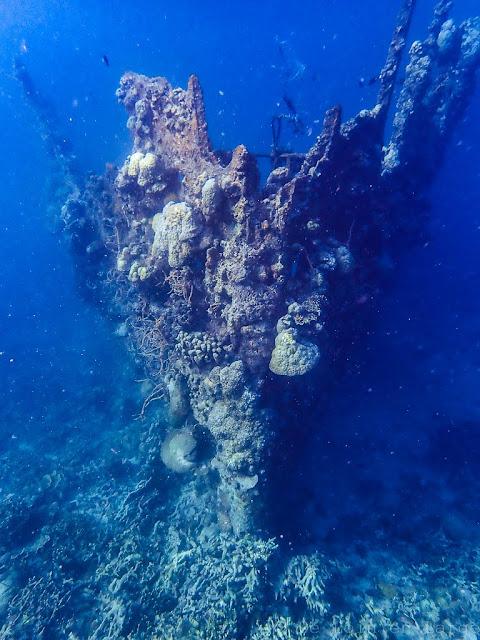 Skeleton Wreck-Coron-Philippines