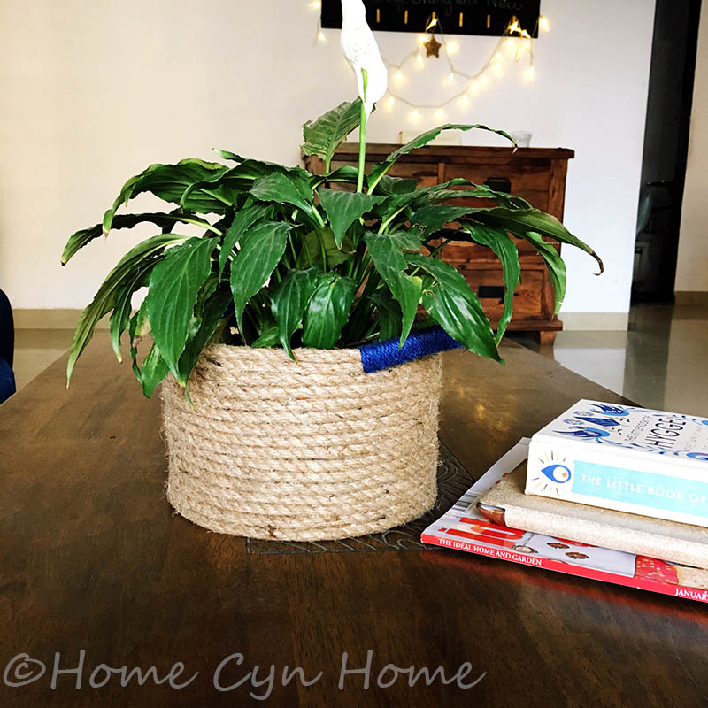 This little basket DIY project is the perfect thing to give your home a natural vibe and display your house plants in style.
