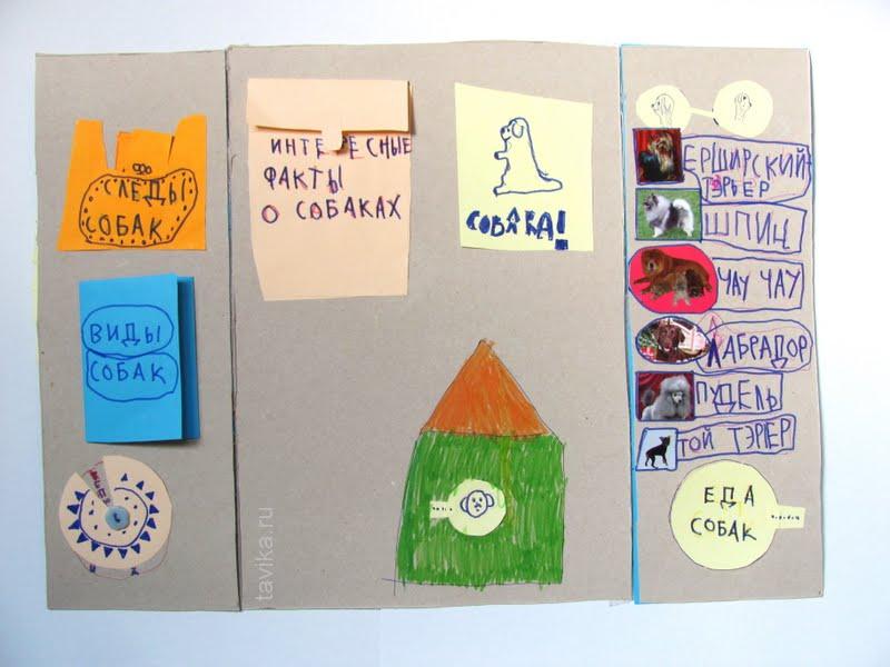 lapbook про собак своими руками