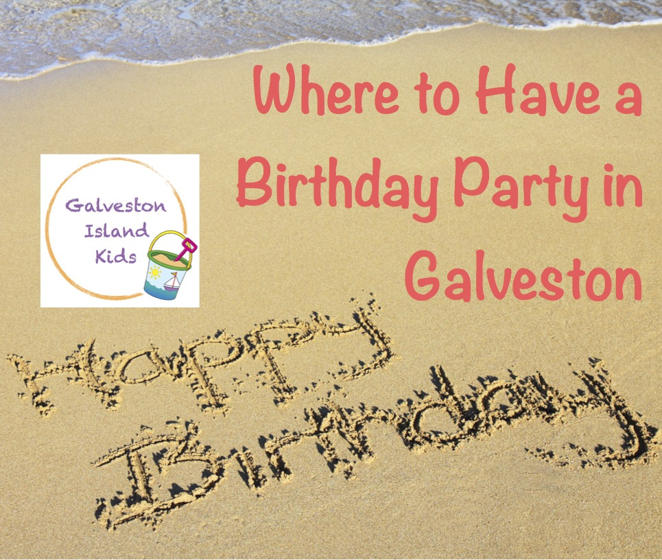 Galveston Island Kids Galveston Birthday Party Venues