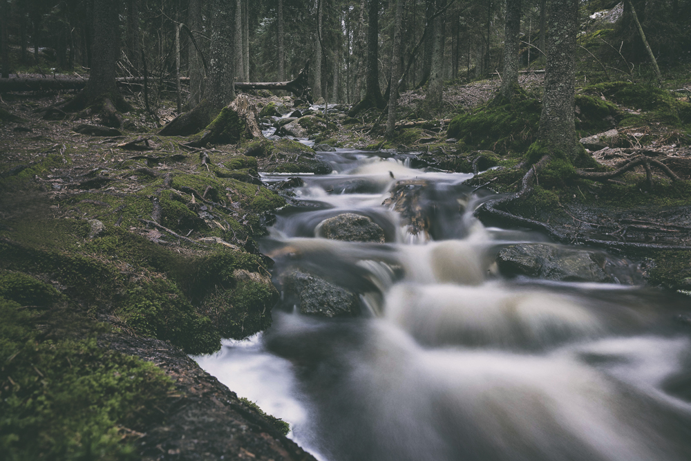 Nuuksio, Espoo, Kansallispuisto, luonto, nature, luontokuva, naturephotography, photographer, valokuvaaja, Frida Steiner, Espoo, Visualaddict, valokuvausblogi, Visualaddictfrida, valokuvaaminen, metsä, woods, park, national park, visitfinland, Finland, Nordic, Scandinavia, puro, stream