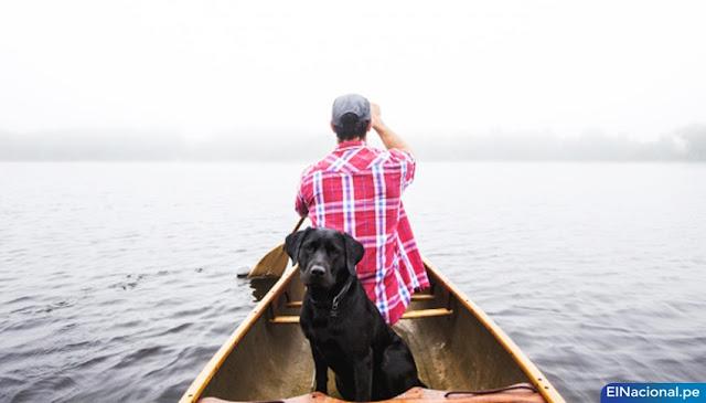 Rescatan a perrito de rio