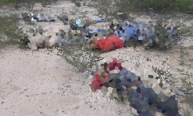 Fotos: Abandonas los cuerpos de 9 personas ejecutadas en San Luis Potosi
