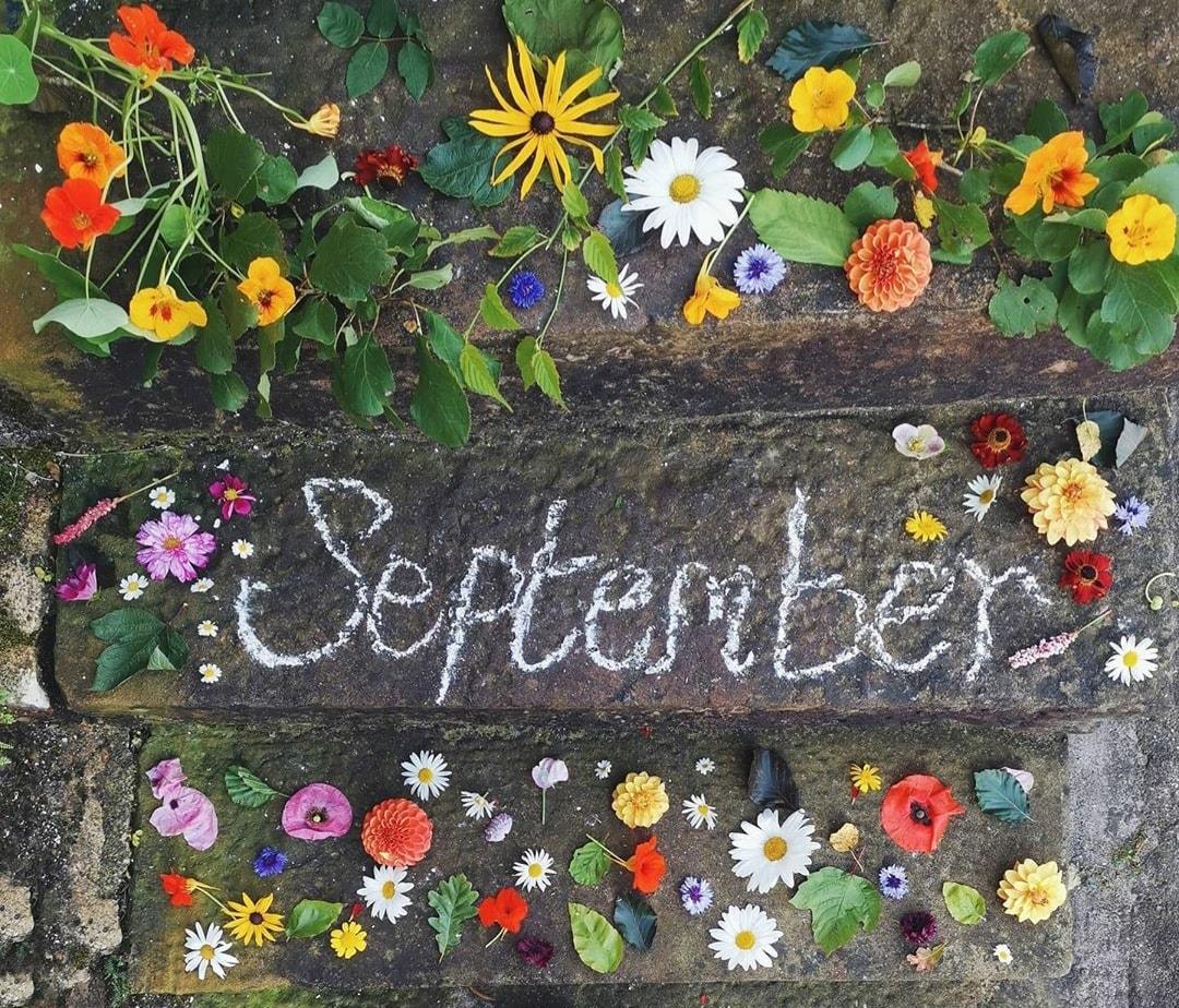 mjesečni-horoskop-septembar-jesen-2020-astrologija
